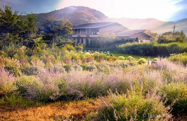 【河口湖自由行攻略】看富士山一日遊行程、景點、交通、美食、住宿攻