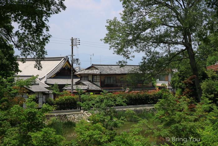 伏見稻荷大社-40