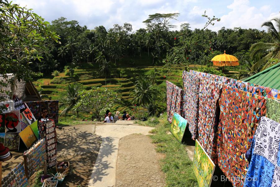 tegallalang-terrace-16