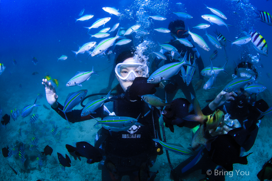 dive-in-kenting-35