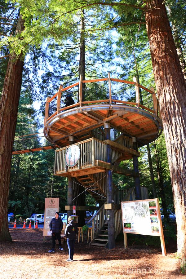 rotorua-redwood-11