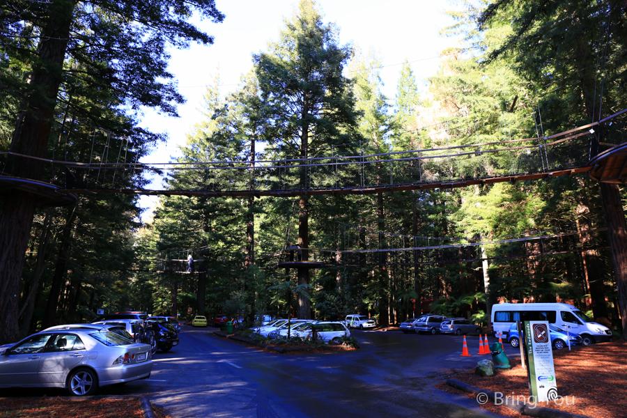 rotorua-redwood-8