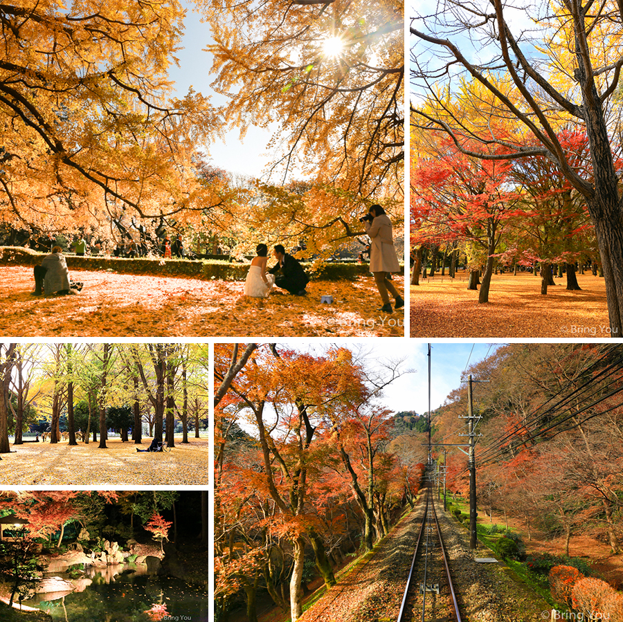 Tokyo_fall
