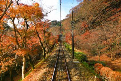 【東京近郊賞楓景點】高尾山纜車,不去會後悔!楓紅真是美翻了(交通方式篇)