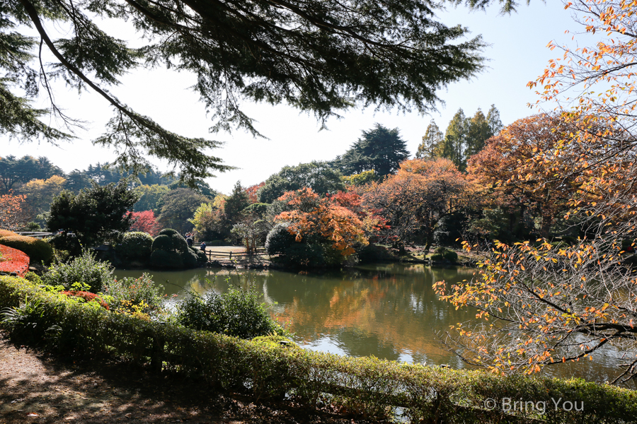 Shinjuku-Gyoen-National-Garden_-11
