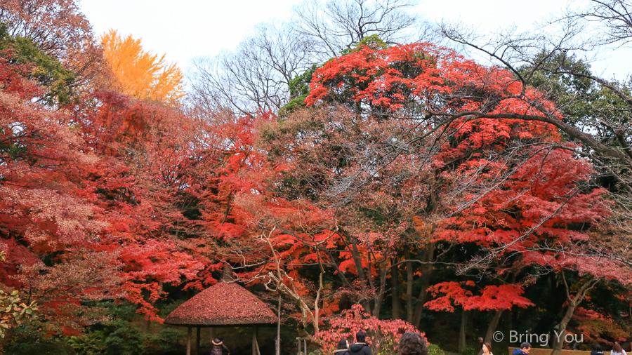 koishikawa-garden-12