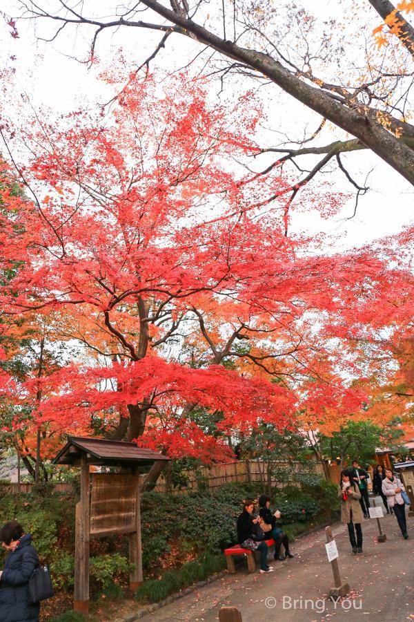 koishikawa-garden-2