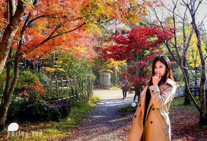 北九州自由行-福岡.長崎.由布院