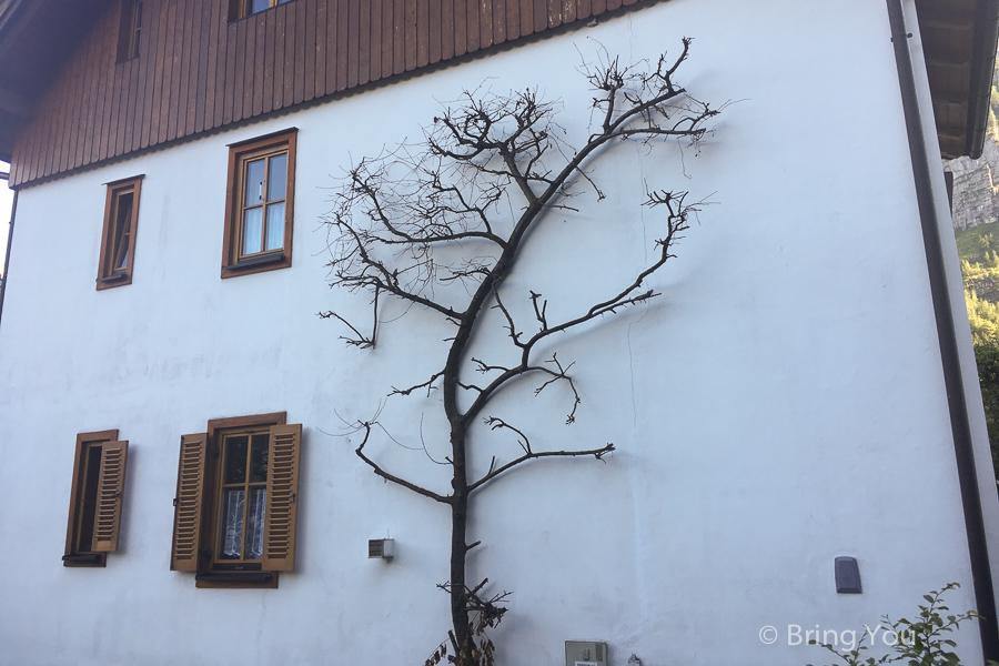 salzburg-hallstatt-17
