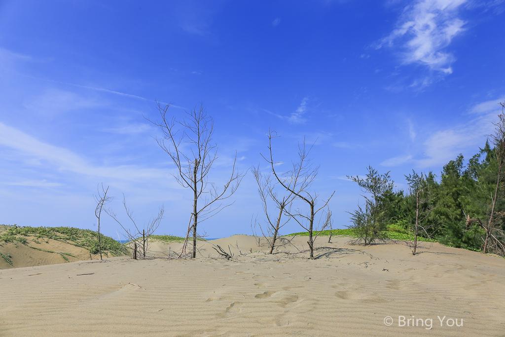 tainan-desert-14