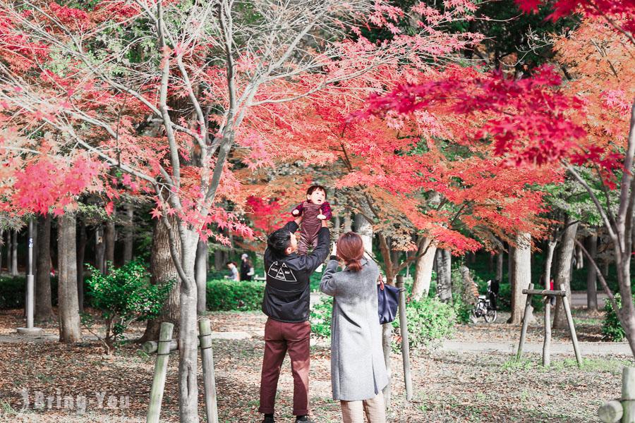 大阪城天守閣-大阪城公園