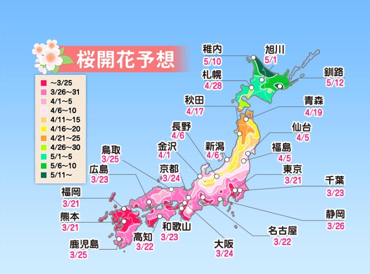 東京櫻花開花前線預測