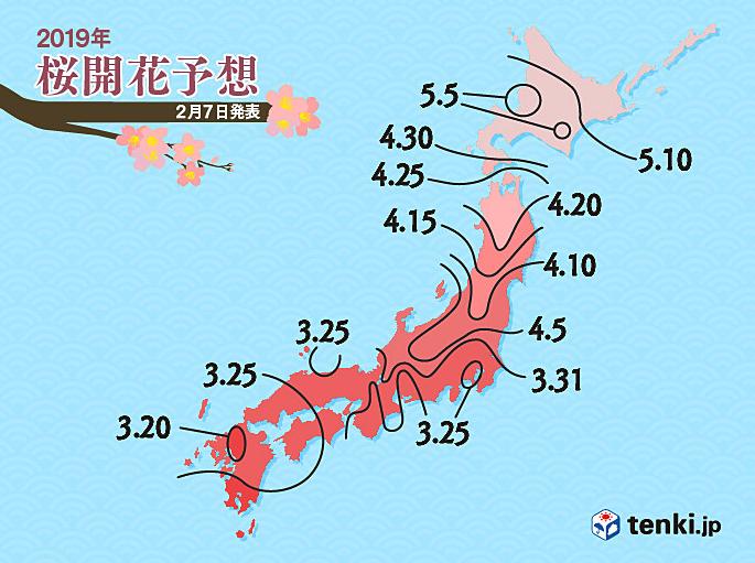 日本櫻花開花時間預測