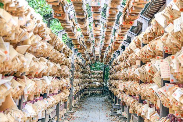 【川越景點】冰川神社:戀愛結緣聖地,日本的月老廟特色人形流