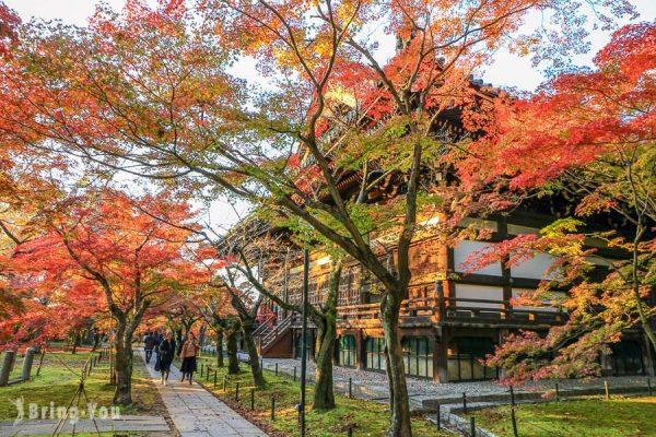 【京都賞楓景點】真如堂:南禪寺附近免費賞楓名所