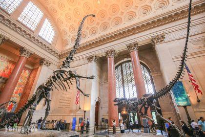 【美國紐約】自然歷史博物館門票攻略、各區域必看展覽介紹