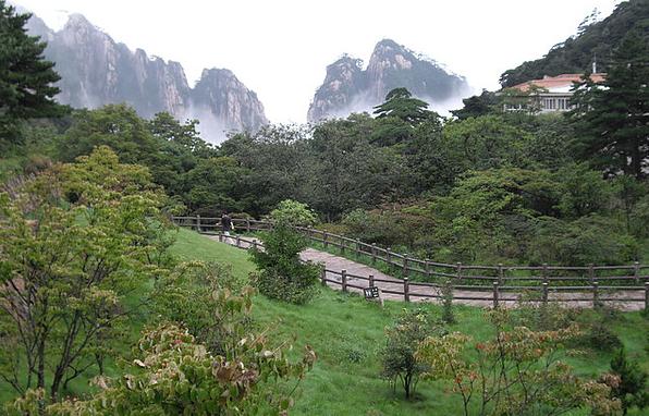 中國自助行 x 黃山兩天一夜 x 霧中登山體驗