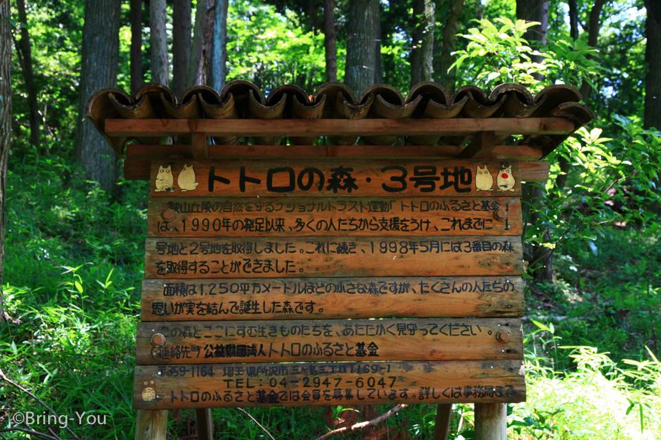 龍貓森林-14