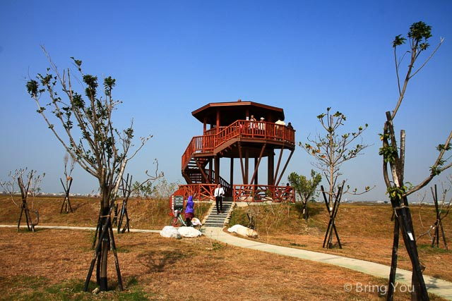 高雄旅遊景點 茄萣 濕地-17