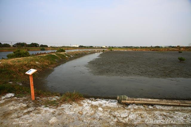 高雄旅遊景點 茄萣 濕地-41