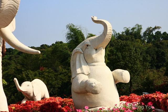 大樹旅遊 佛陀紀念館-7