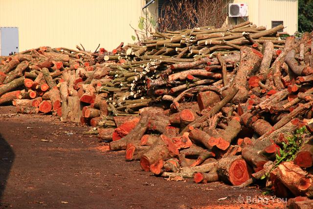 大樹旅遊 木炭窯-10