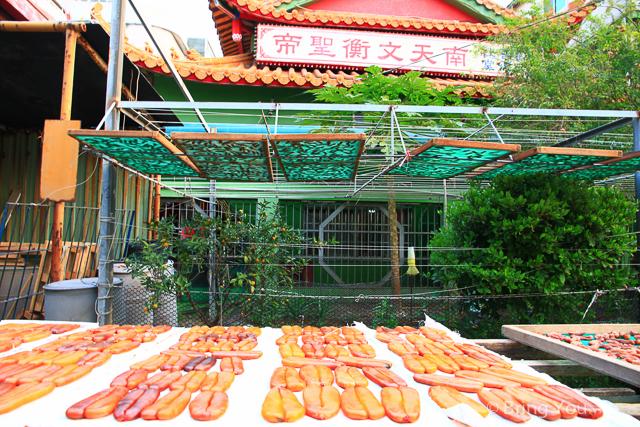 旗津美食旅遊-97