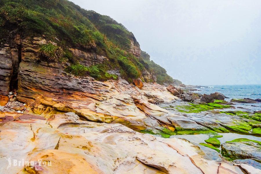 【台北金山一日遊】神秘海岸:北海岸探險景點