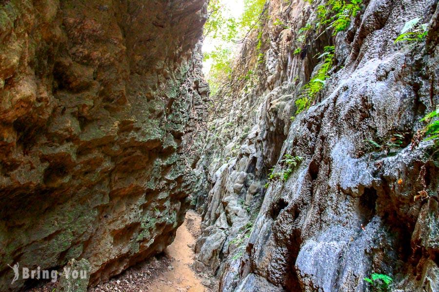 【高雄大崗山風景區景點】一線天:台灣就有壯觀的雄偉峭壁