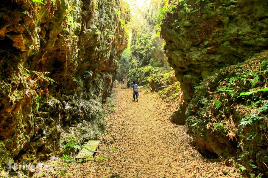 【大崗山秘境】真的像叢林探險家般的高雄景點, 盤龍峽谷