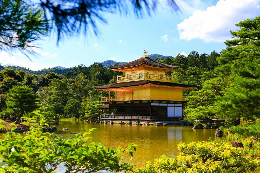 【京都景點】金碧輝煌的金閣寺行程(鹿苑寺),一休和尚卡通場景就在這!