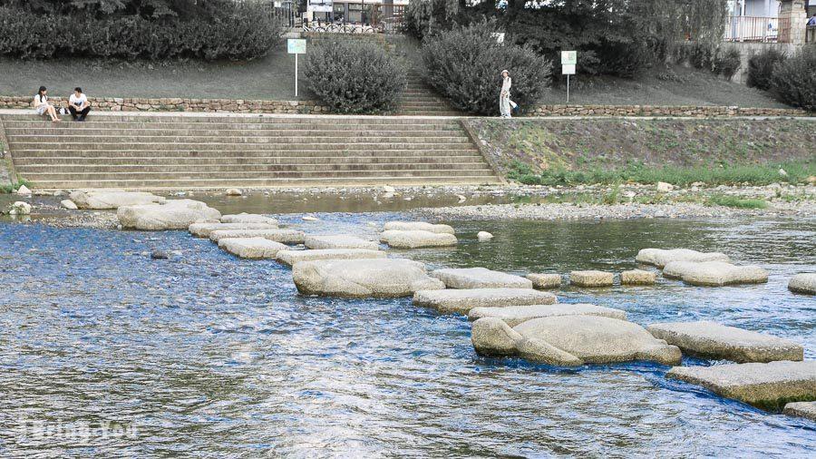 鴨川跳烏龜