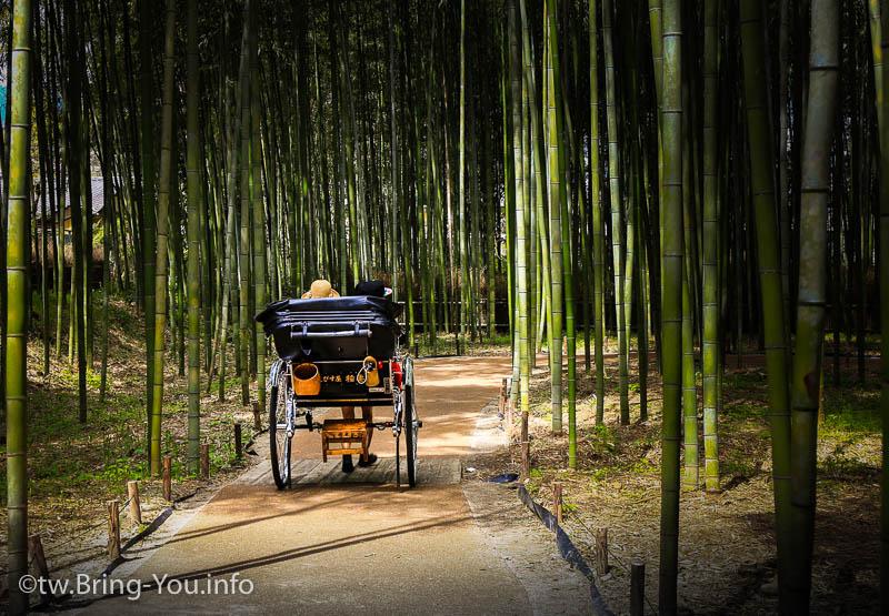 【關西一日遊】豪華大巴直達~清水寺、嵐山、有馬溫泉,三個願望一次滿足