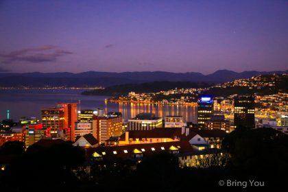 【威靈頓景點】Wellington Botanic Garden,植物園夜景觀星去!