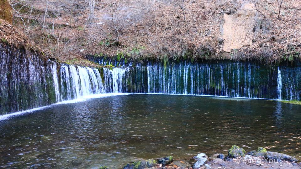 【日本輕井澤景點】冬天的白絲瀑布(白糸の滝),含交通方式