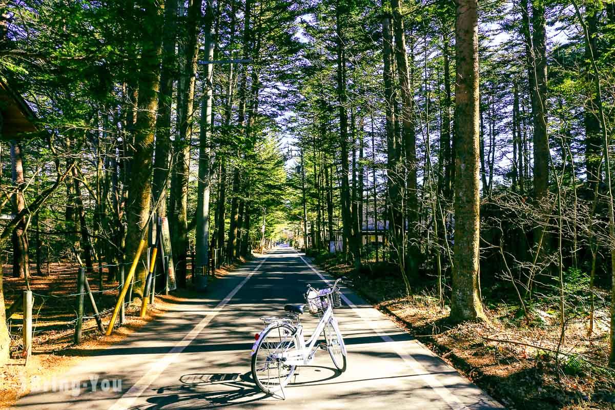【輕井澤腳踏車路線分享】騎單車漫遊雲場池.舊輕井澤銀座商店街