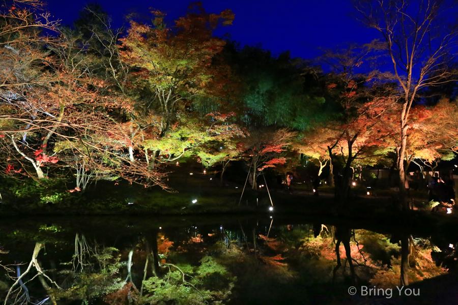 kyoto_maple_leaf-10