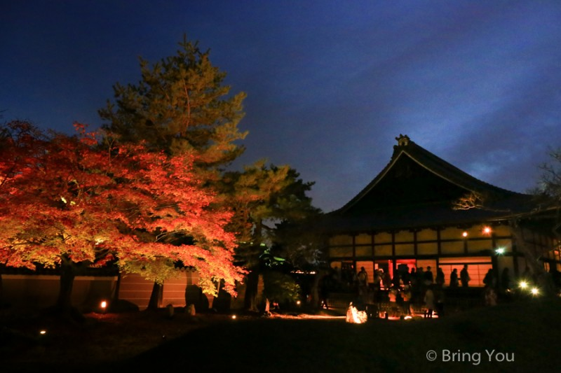 kyoto_maple_leaf-11