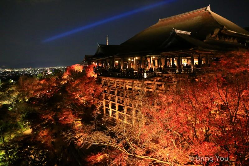 kyoto_maple_leaf-13