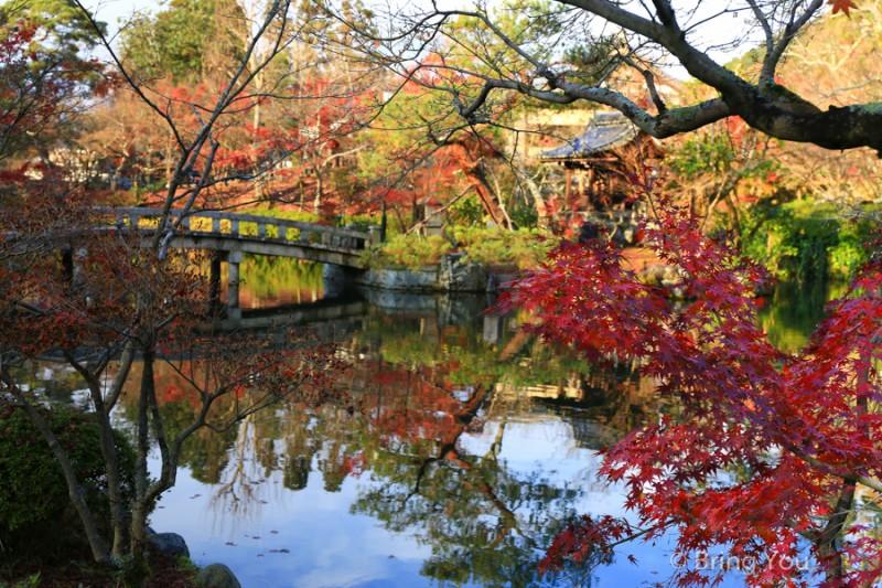 kyoto_maple_leaf-5