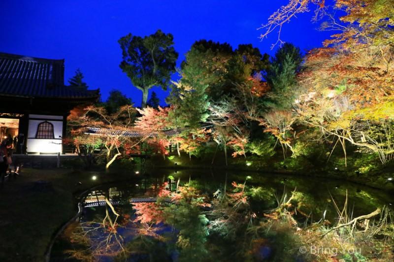 kyoto_maple_leaf-9