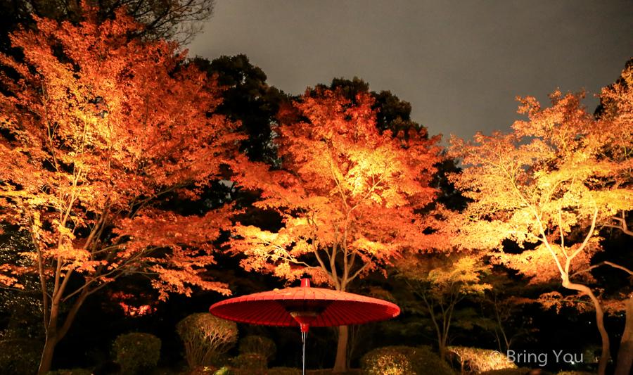 tokyo_garden_maple_leaf-2