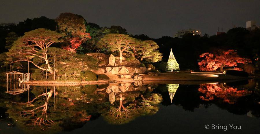 tokyo_garden_maple_leaf-3