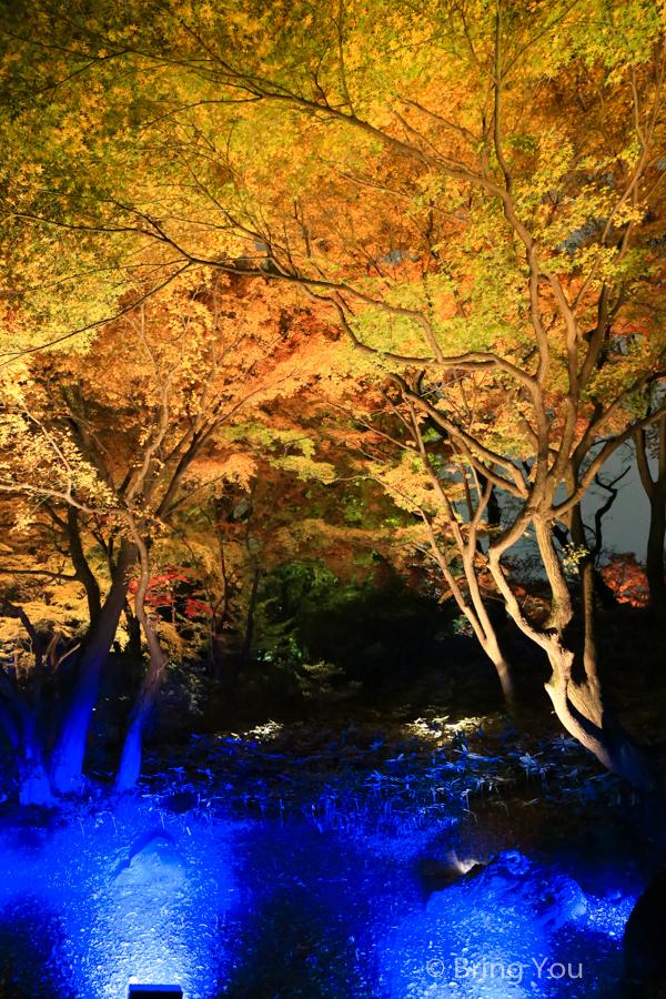 tokyo_garden_maple_leaf-6