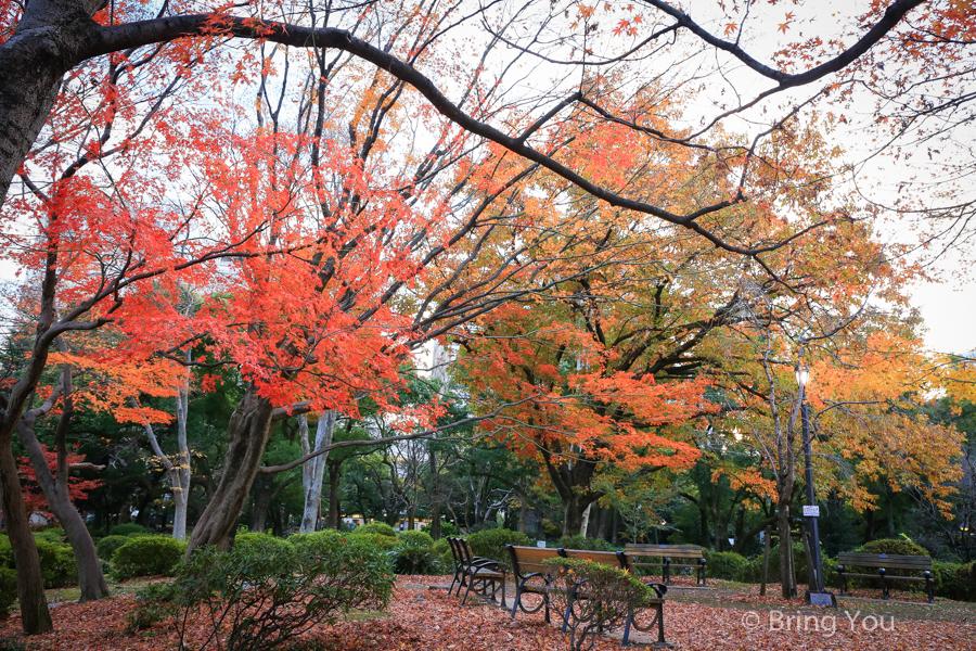 東京賞楓景點