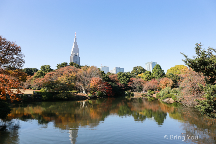 Shinjuku-Gyoen-National-Garden_-12
