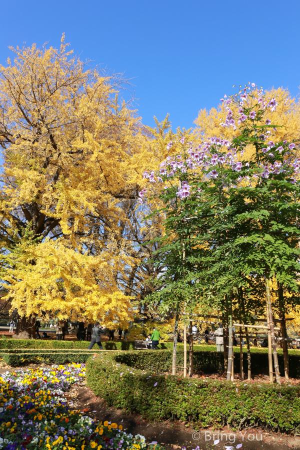 Shinjuku-Gyoen-National-Garden_-7