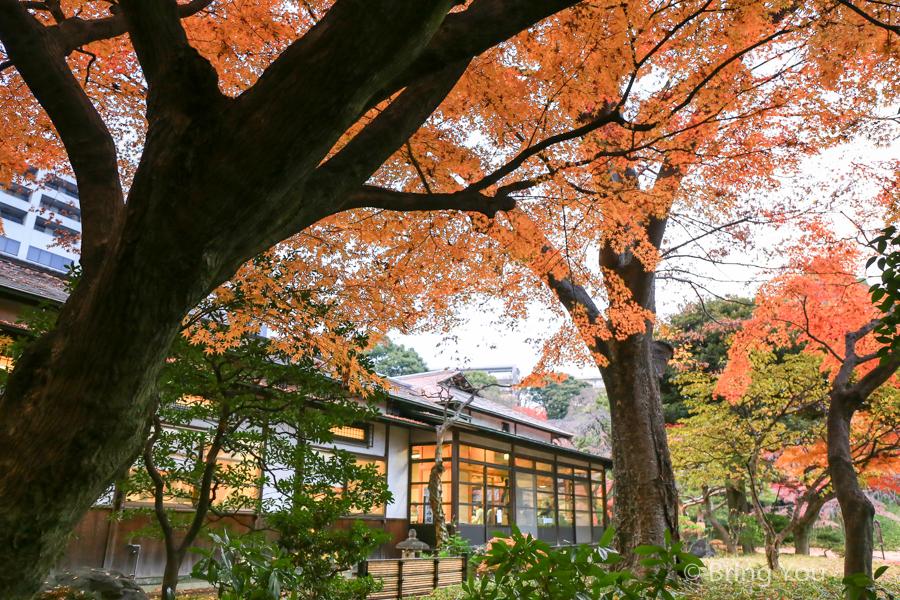 koishikawa-garden-5