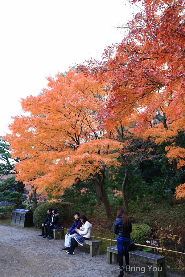 koishikawa-garden-6