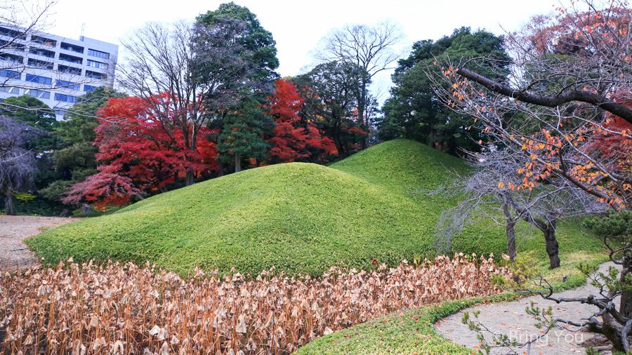 koishikawa-garden-9